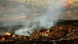 Εμπρησμό από πρόθεση «βλέπει» η Πυροσβεστική στη φωτιά στο Άλσος Βεΐκου