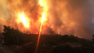 Προφυλακίστηκε ο 24χρονος που είχε βάλει 16 φωτιές σε περιοχές της Αθήνας