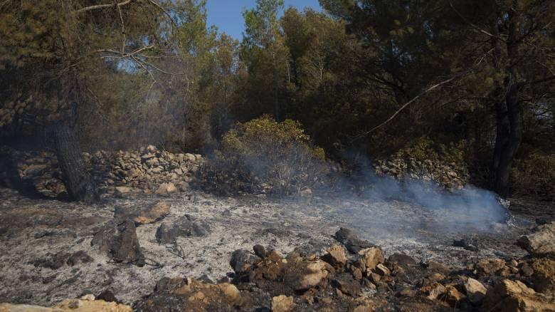 Φωτιά στο Ζέλι του Δήμου Φθιώτιδας