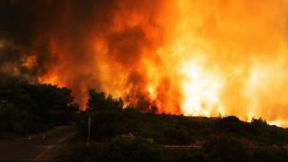 Φωτιά στην Αλβανία – Επικίνδυνες οι φλόγες για τα ελληνικά μειονοτικά χωριά