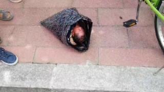 Μητέρα προσπάθησε να ταχυδρομήσει το νεογέννητο μωρό της σε ορφανοτροφείο (vid)