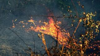 Υπό έλεγχο και οι τρεις εστίες της πυρκαγιάς στη νότιο Αλβανία