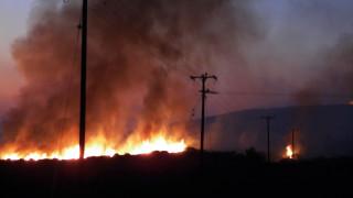 Καμένα Βούρλα: Υπό έλεγχο η μεγάλη πυρκαγιά (pics)