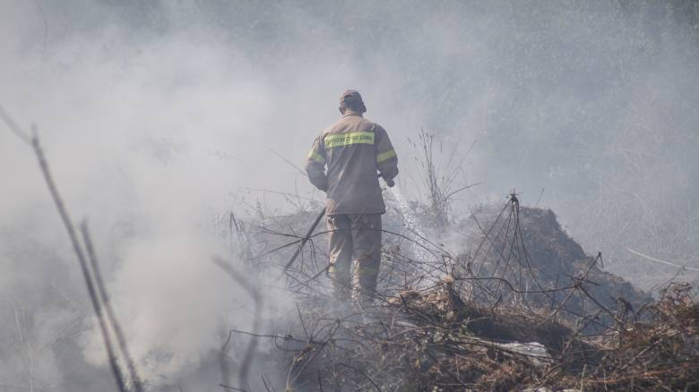 Ζάκυνθος: Νέο πύρινο μέτωπο στην περιοχή Κοιλιομένος (pics)