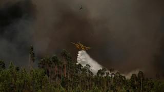 Πορτογαλία: Υπό έλεγχο οι πυρκαγιές - Υψηλός ο κίνδυνος αναζωπυρώσεων