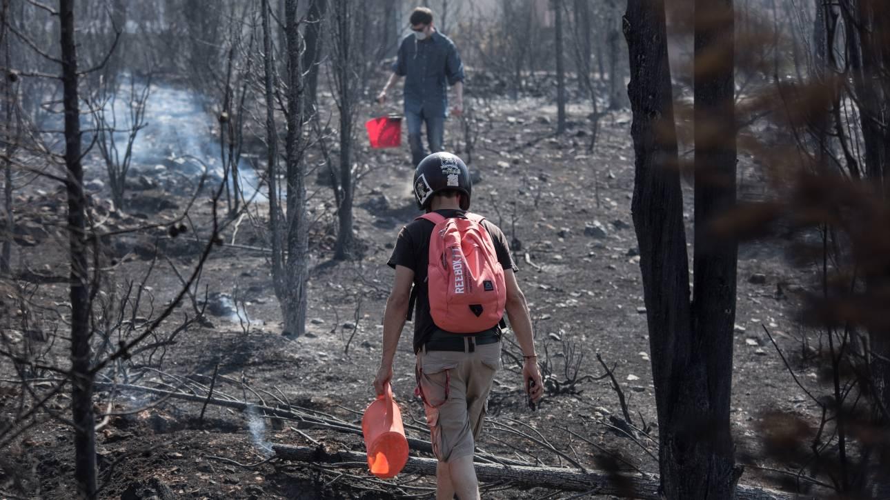 Πολύ υψηλός ο κίνδυνος πυρκαγιάς την Κυριακή - Ποιες περιοχές κινδυνεύουν περισσότερο