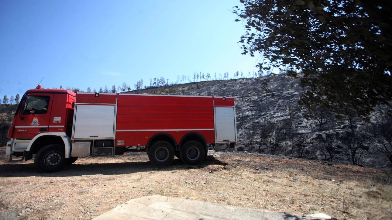 Η Ελλάδα στέλνει πυροσβεστικά οχήματα στην Αλβανία για τις πυρκαγιές