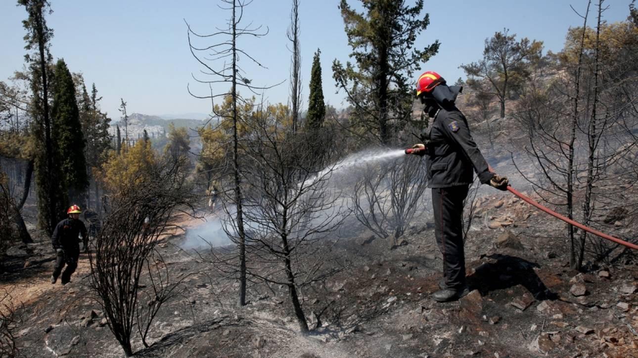 Αλβανία: Συνεχίζονται οι προσπάθειες κατάσβεσης πυρκαγιάς με βοήθεια από την Ελλάδα