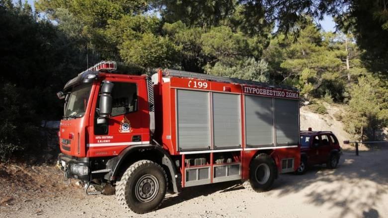 Κλειστό το δάσος του Σέιχ Σου το βράδυ λόγω υψηλού κινδύνου πυρκαγιάς