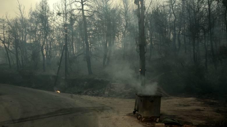ΝΔ για πυρκαγιές: «Αποσταθεροποιητικός παράγοντας είναι ο κ. Τόσκας»