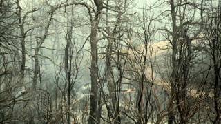 Η μάχη με τις φλόγες συνεχίζεται στη Ζάκυνθο - Τρεις φωτιές στο νησί