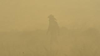 Φωτιά στο Κρυονέρι Αμαλιάδας - Έχει ζητηθεί εκκένωση χωριού (pics)