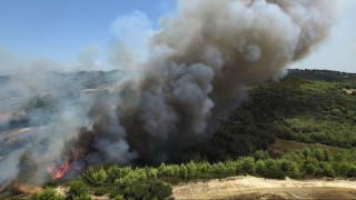 Φωτιά στο Κρυονέρι Αμαλιάδας, εκκενώνεται προληπτικά χωριό  (pics)