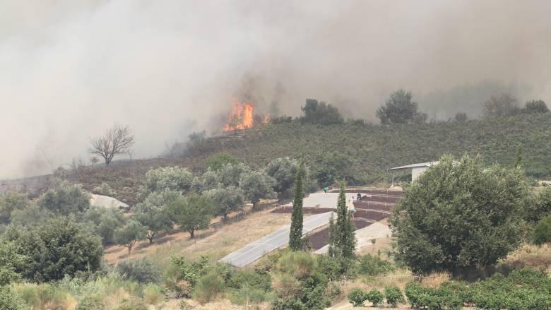 Πυρκαγιές στην Ηλεία: Μαίνεται το μέτωπο στο Κρυονέρι