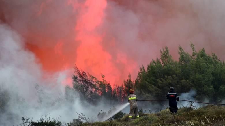 Υψηλός ο κίνδυνος εκδήλωσης πυρκαγιάς την Τρίτη