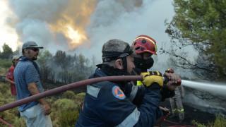 Υψηλός ο κίνδυνος εκδήλωσης πυρκαγιάς και την Τρίτη
