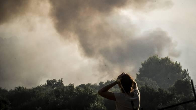 Ηλεία:  Σε ύφεση τα πύρινα μέτωπα (pics)