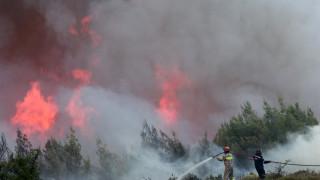 Εκπρόσωπος Πυροσβεστικής: Η πυρκαγιά συνεχίζει το καταστροφικό της έργο