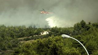 Πυροσβεστική: Προσαγωγή 63χρονου στην Πάρνηθα, εξετάζεται για εμπρησμούς