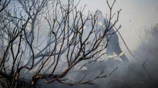 Χωρίς ενεργά μέτωπα η πυρκαγιά στην Ανατολική Αττική