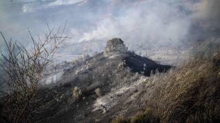 Φωτιά στην Ηλεία: Συνεχίζεται η μάχη - Δεν απειλούνται κατοικημένες περιοχές