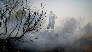 Σε επιφυλακή οι πυροσβεστικές δυνάμεις στην Ηλεία υπό τον φόβο νέων αναζωπυρώσεων