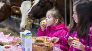 Οι πιθανοί κίνδυνοι αν τα παιδιά δεν τρώνε πρωινό
