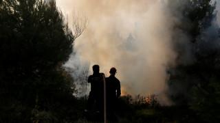 Οι αιτίες και το κόστος των δασικών πυρκαγιών στην Ευρώπη (pics)