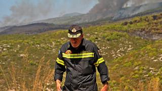 Σαράντα εννέα πυρκαγιές μέσα σε ένα 24ωρο - Σε ποιές περιοχές επιχειρούν δυνάμεις