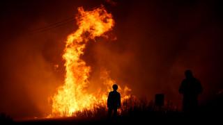 Πορτογαλία: Δεκάδες συλλήψεις για εμπρησμούς, την ώρα που συνεχίζεται η μάχη με τις φλόγες