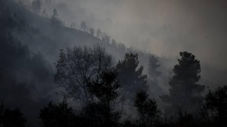 Αρχιπύραρχος ΠΣ για τη φωτιά στον Κάλαμο: Το ευτύχημα είναι ότι δεν είχαμε θύματα