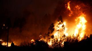 Στο έλεος των πυρκαγιών παραμένει η Πορτογαλία
