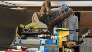Μητέρα βρήκε δηλητηριώδες φίδι τυλιγμένο σε παιχνίδι των παιδιών της (Pic)