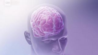 «Ανατομία» του μίσους: Τι συμβαίνει στον ανθρώπινο εγκέφαλο όταν μισούμε;