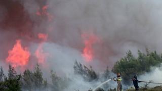 Ηλεία: Μεγάλη φωτιά στη Ζαχάρω