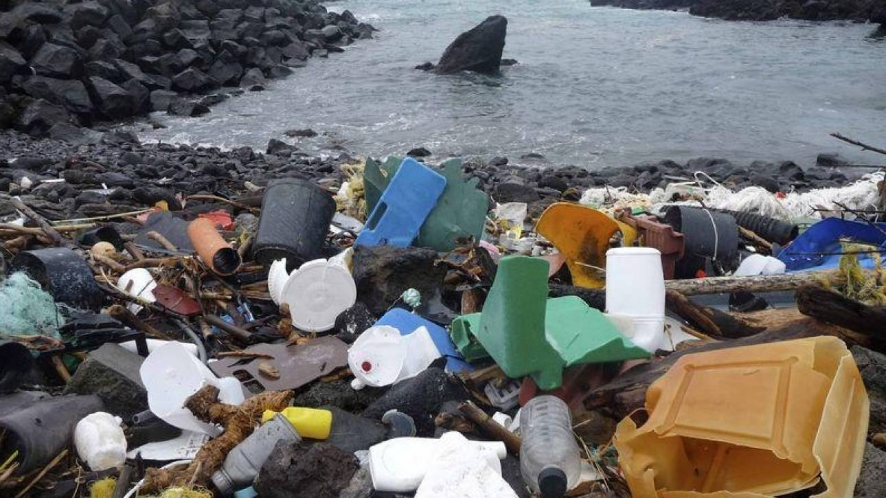 Θανατηφόρες οι πλαστικές σακούλες στη θάλασσα-Πώς συνδέονται με την εμφάνιση μεδουσών