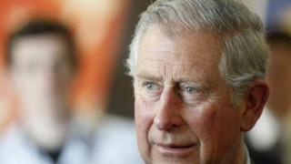 «Πέφτει» η δημοτικότητα του Καρόλου λόγω των εκδηλώσεων στη μνήμη της πριγκίπισσας Νταϊάνα