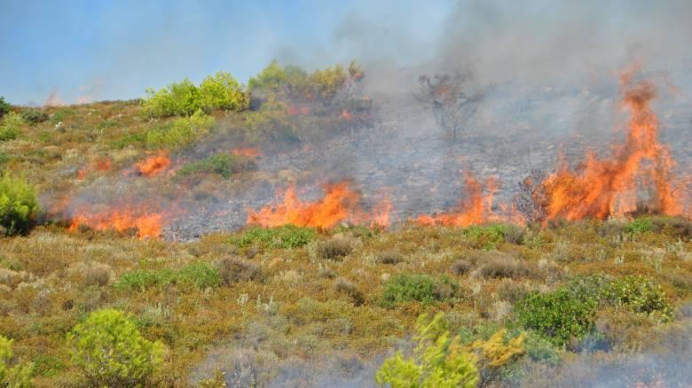Δύο πυρκαγιές σε εξέλιξη στην Κέρκυρα