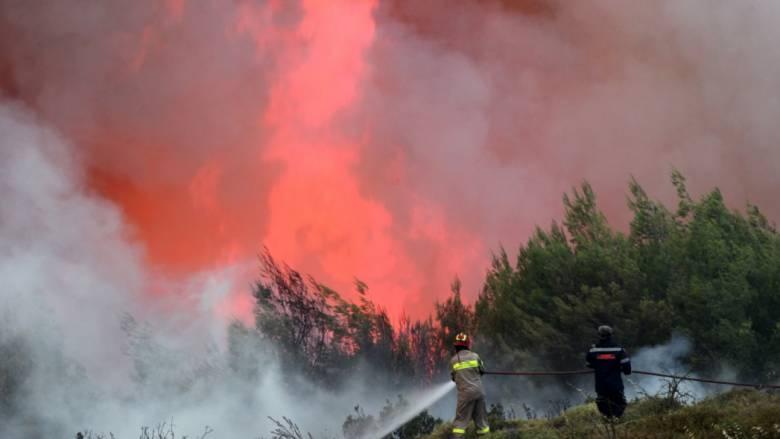 Σε πύρινο κλοιό η χώρα: Μαίνονται οι πυρκαγιές σε Ρυτό Κορινθίας και Κέρκυρα (pics&vid)