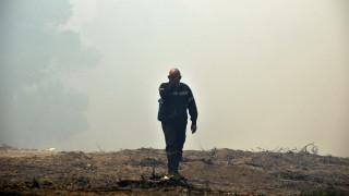 Τραυματίστηκε πυροσβέστης στη φωτιά στα Ροδινά Ηλείας