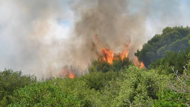 Κέρκυρα: Υπό ύφεση οι τρεις πυρκαγιές που ξέσπασαν στο νησί