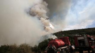 Ζάκυνθος: Σε ύφεση η πυρκαγιά στην Λιθακιά