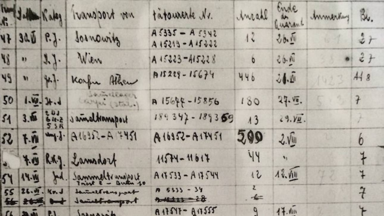 Ολυμπία Δουκάκη: Φέρνει την κόλαση των Ελλήνων του Άουσβιτς στην οθόνη