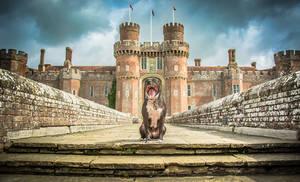 Herstmonceux Castle, Μεγάλη Βρετανία