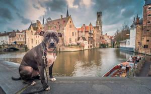 Bruges, Βέλγιο