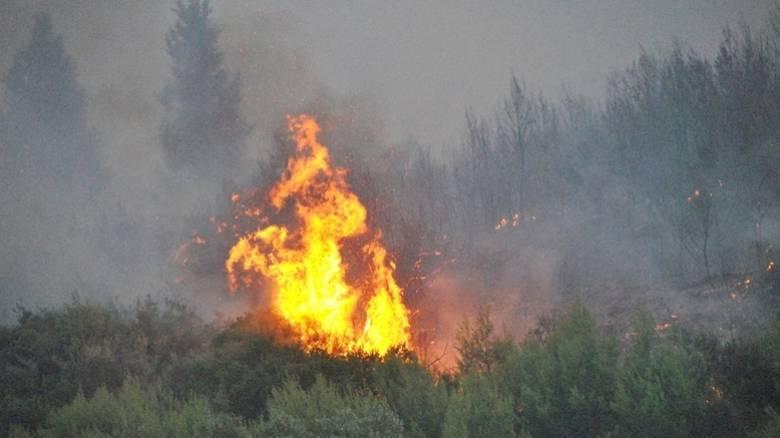 Φωτιά στο Θέρμο