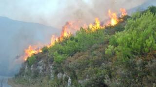 Μεγάλη φωτιά στο Σανταμέρι Αχαΐας – Οι φλόγες απείλησαν μοναστήρι (pics&vid)