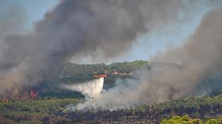 H μεγάλη πυρκαγιά στη Ζάκυνθο από ψηλά (pics&vid)