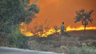 Mάχη με τις φλόγες στη Ζάκυνθο – Η φωτιά περικύκλωσε το χωριό Μαριές (pics)
