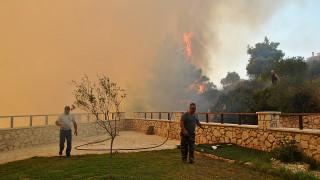 ΓΓ Πολιτικής Προστασίας: Δεν είναι τυχαίες οι πυρκαγιές στη Ζάκυνθο